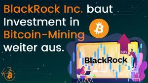 Blackrock Mining Anteile